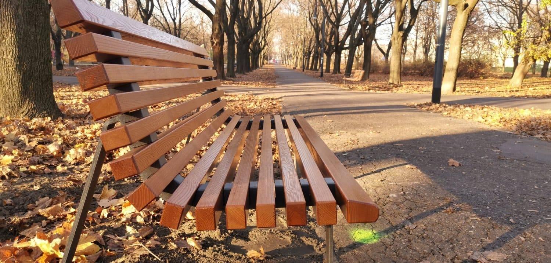 img/lawka-warszawska-z-oparciem-drewno-jesion_0_large.jpg